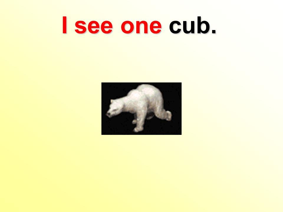 I see one cub.