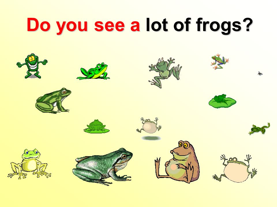 Do you see alot of frogs Do you see a lot of frogs
