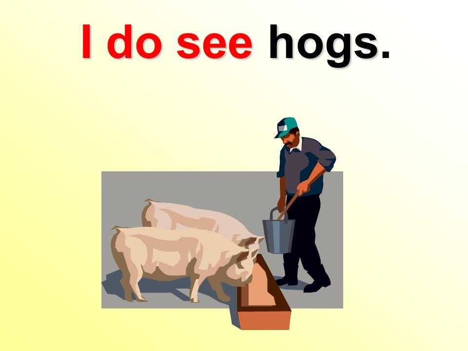 I do seehogs I do see hogs.