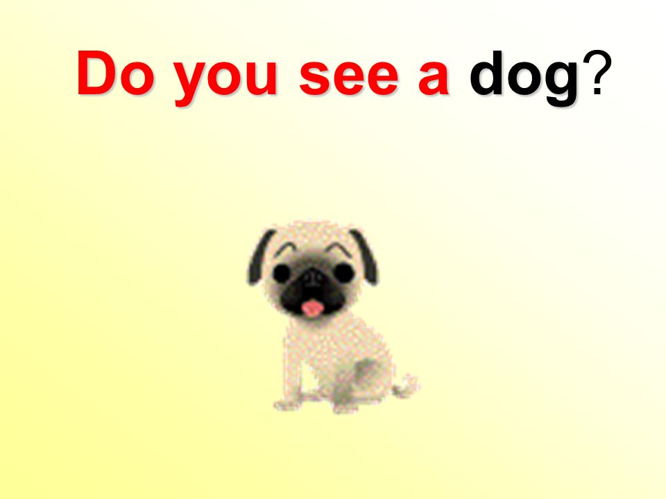 Do you see a dog Do you see a dog