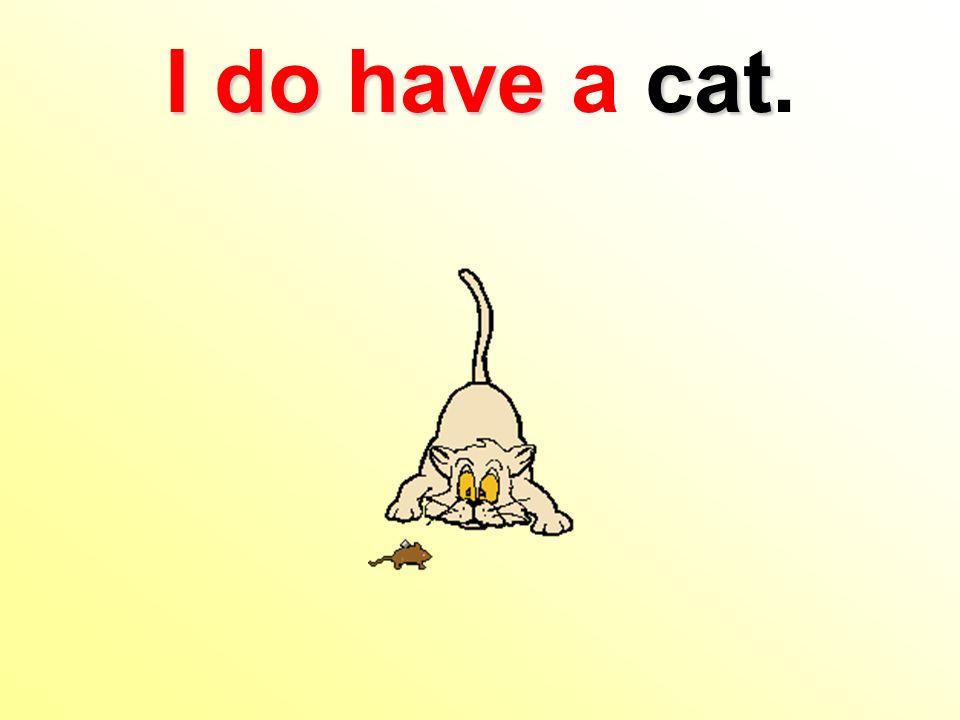I do havecat I do have a cat.