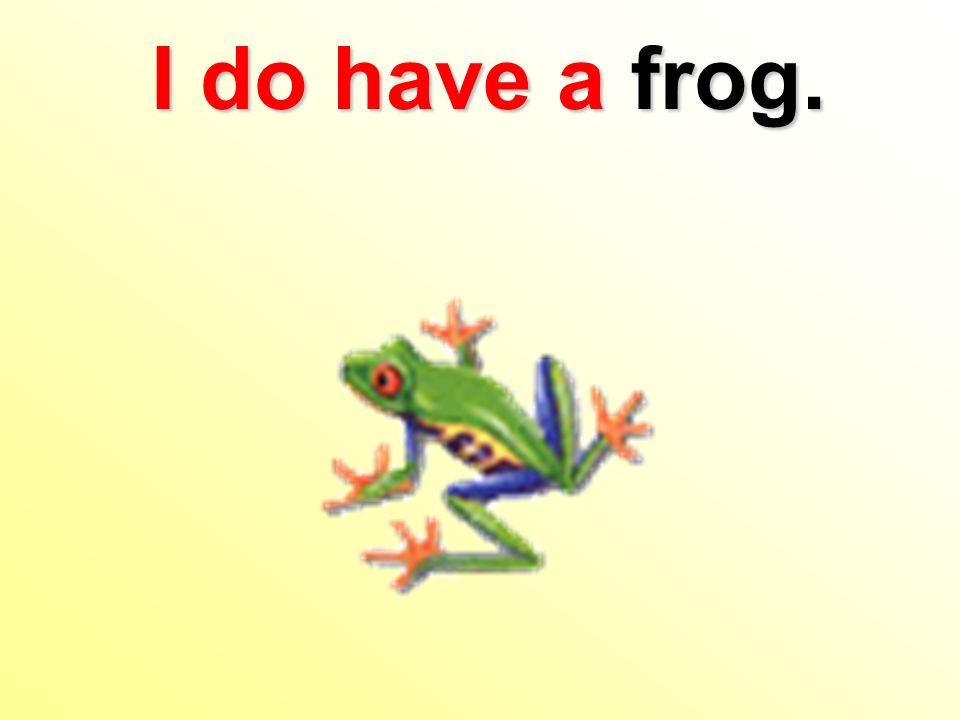 I do have afrog. I do have a frog.