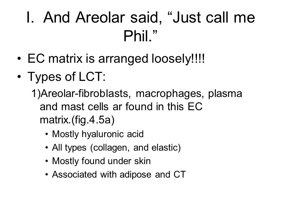 I. And Areolar said, Just call me Phil. EC matrix is arranged loosely!!!! Types of LCT: 1)Areolar-fibroblasts, macrophages, plasma and mast cells ar f