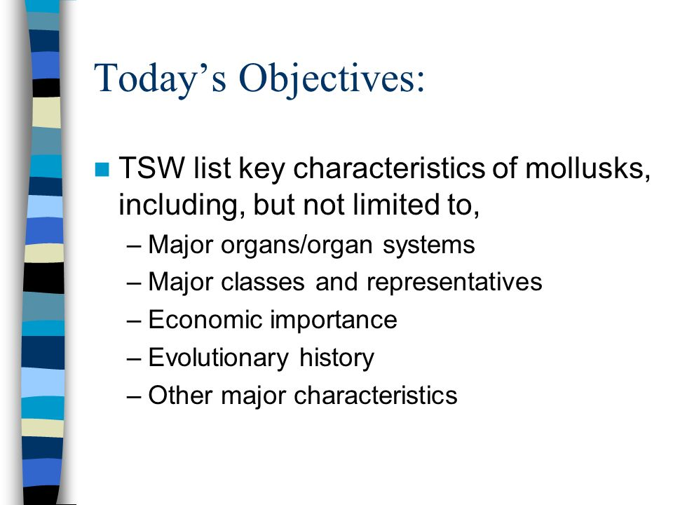 Todays Objectives: TSW list key characteristics of mollusks, including, but not limited to, –Major organs/organ systems –Major classes and representat