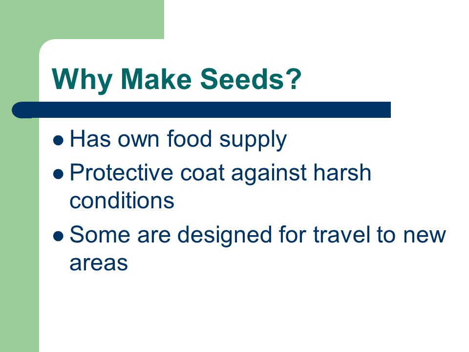 Why Make Seeds? Has own food supply Protective coat against harsh conditions Some are designed for travel to new areas