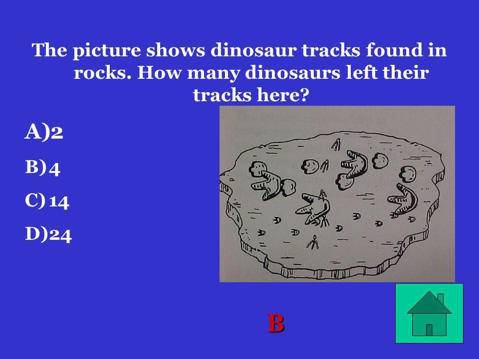 D At which of these points is at 12:00 noon? A) A)1 B) B)2 C) C)3 D) D)4