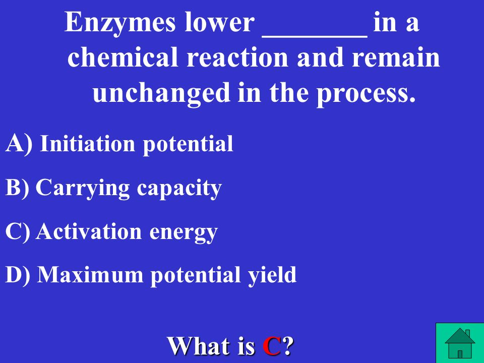 What is D? An enzyme is a ________ that catalyzes, or speeds up, a chemical reaction. A) A) Carbohydrate B) B) Lipid C) C) Nucleic Acid D) D) Protein