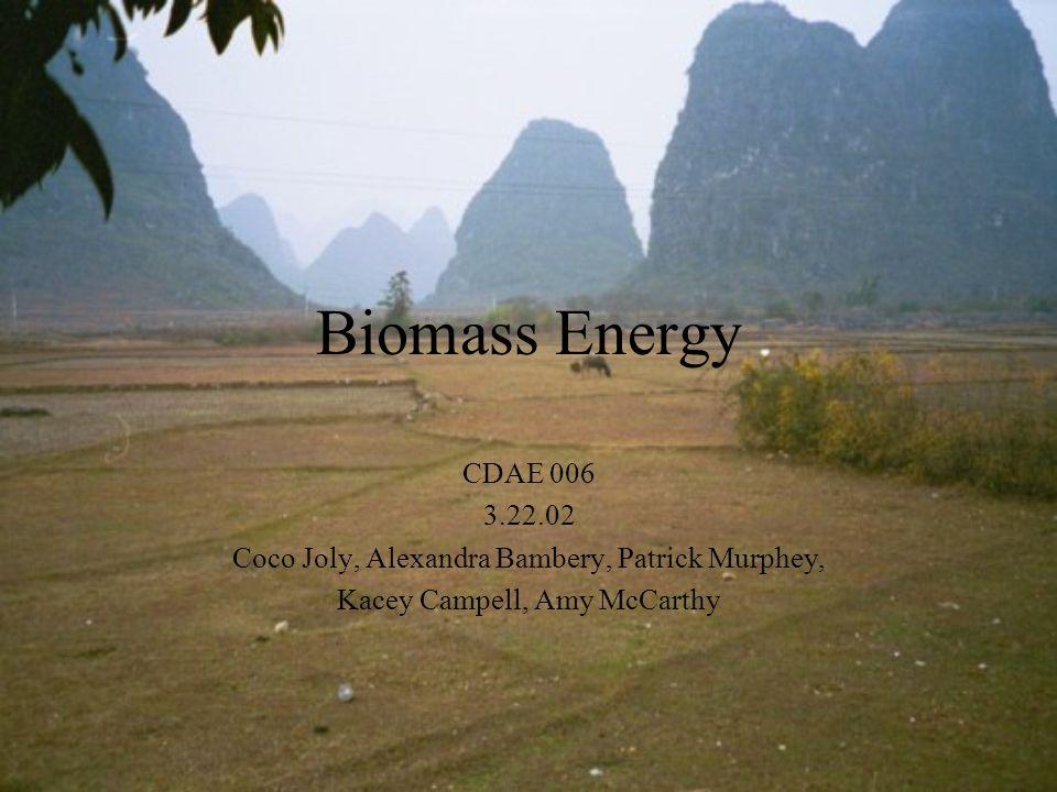 Biomass Energy CDAE 006 3.22.02 Coco Joly, Alexandra Bambery, Patrick Murphey, Kacey Campell, Amy McCarthy
