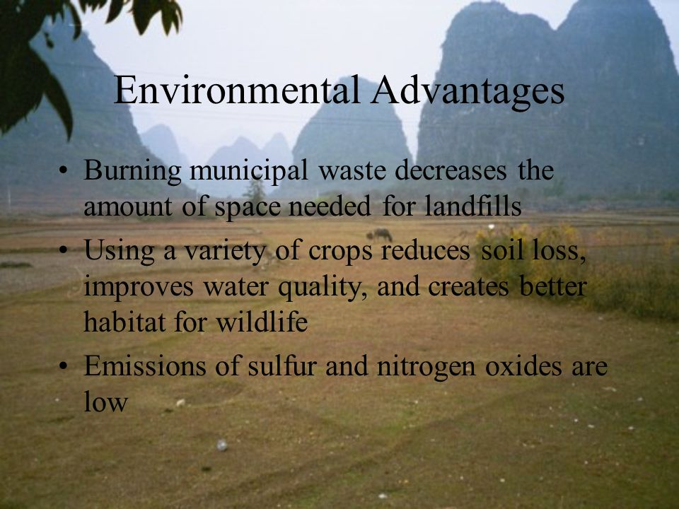 Environmental Advantages Burning municipal waste decreases the amount of space needed for landfills Using a variety of crops reduces soil loss, improv