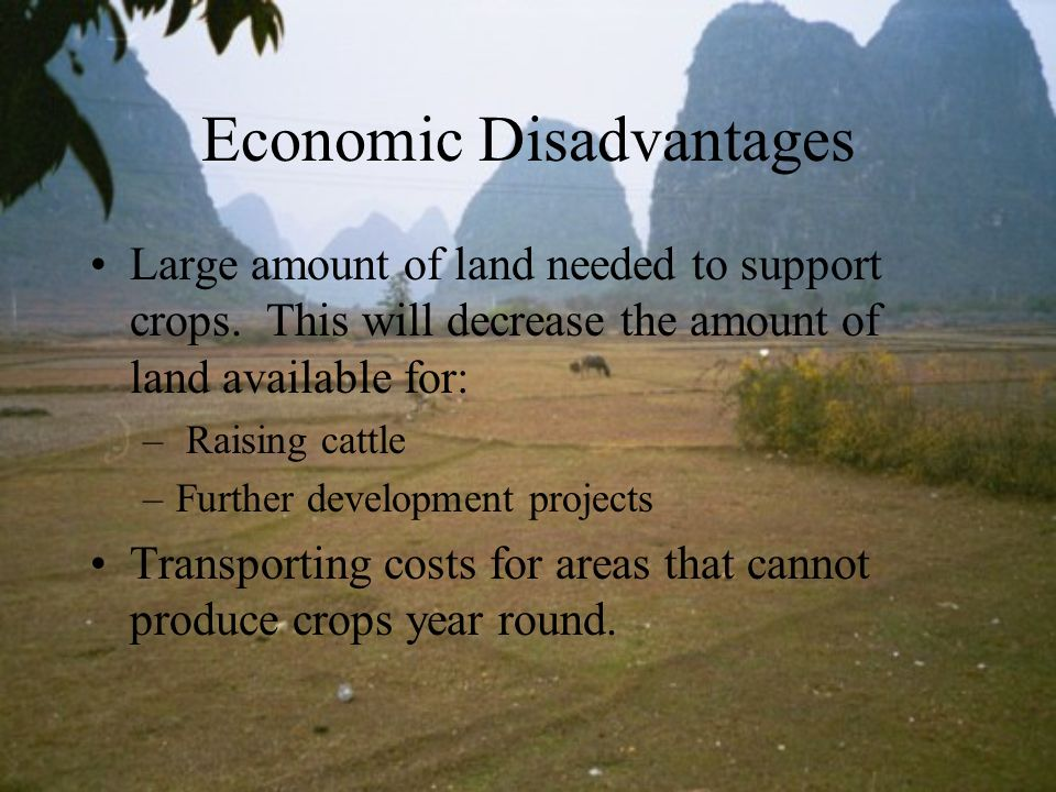 Economic Disadvantages Large amount of land needed to support crops. This will decrease the amount of land available for: – Raising cattle –Further de