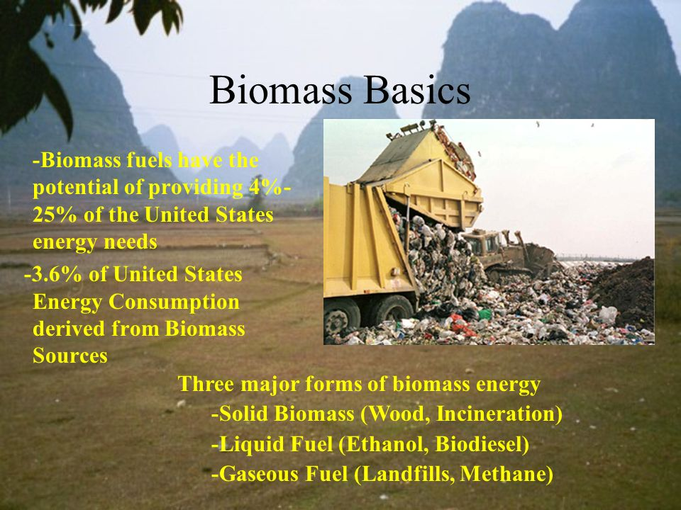 Biomass Basics -Biomass fuels have the potential of providing 4%- 25% of the United States energy needs -3.6% of United States Energy Consumption deri