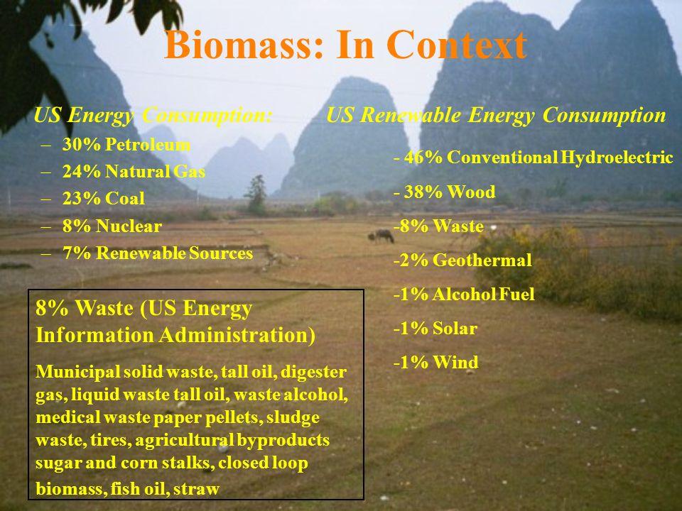 Biomass: In Context US Energy Consumption: –30% Petroleum –24% Natural Gas –23% Coal –8% Nuclear –7% Renewable Sources US Renewable Energy Consumption