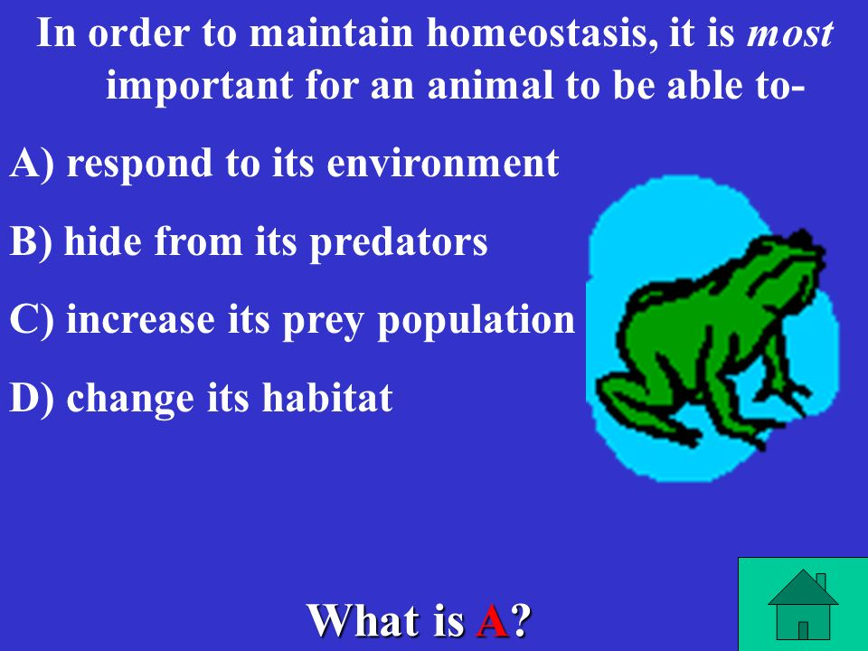 What is A? Proteins are formed from monomers (subunits) called- A) A) amino acids B) B) fatty acids C) C) nucleic acids D) D) nucleotides