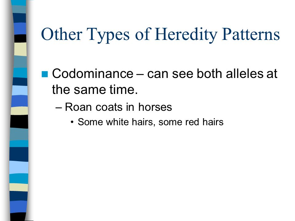 Other Types of Heredity Patterns Codominance – can see both alleles at the same time. –Roan coats in horses Some white hairs, some red hairs
