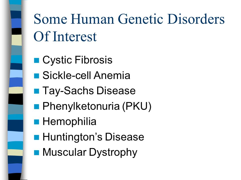 Some Human Genetic Disorders Of Interest Cystic Fibrosis Sickle-cell Anemia Tay-Sachs Disease Phenylketonuria (PKU) Hemophilia Huntingtons Disease Mus