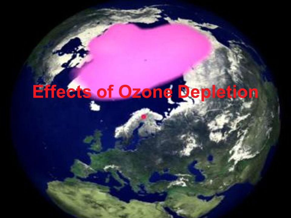 Effects of Ozone Depletion