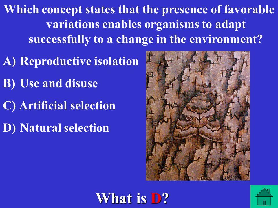 What is A. Which statement best describes evolution.