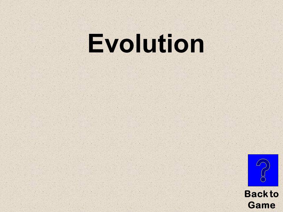 Evolution Back to Game