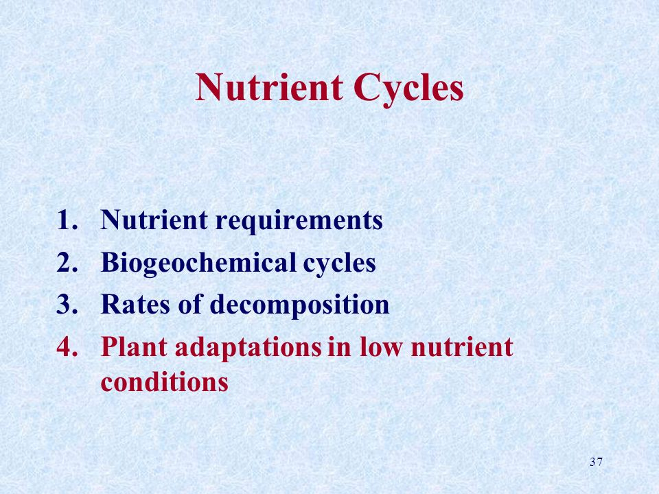 37 Nutrient Cycles 1.Nutrient requirements 2.Biogeochemical cycles 3.Rates of decomposition 4.Plant adaptations in low nutrient conditions