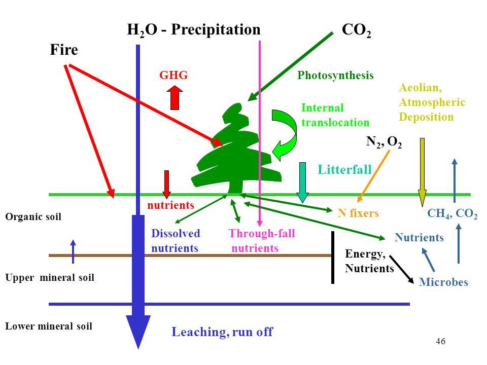 46 Fire H 2 O - PrecipitationCO 2 Organic soil Upper mineral soil Lower mineral soil Leaching, run off Through-fall nutrients Litterfall Internal tran