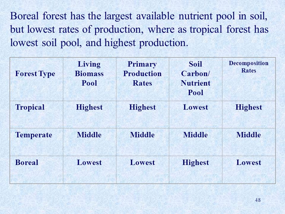 48 Forest Type Living Biomass Pool Primary Production Rates Soil Carbon/ Nutrient Pool Decomposition Rates TropicalHighest LowestHighest TemperateMidd