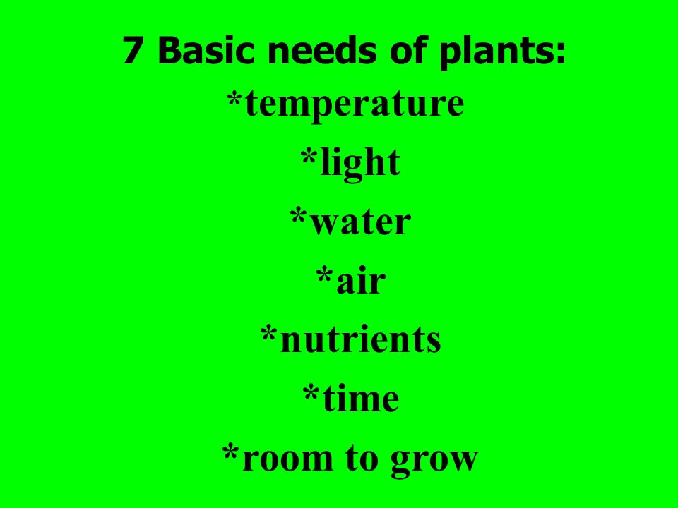 7 Basic needs of plants: * temperature *light *water *air *nutrients *time *room to grow