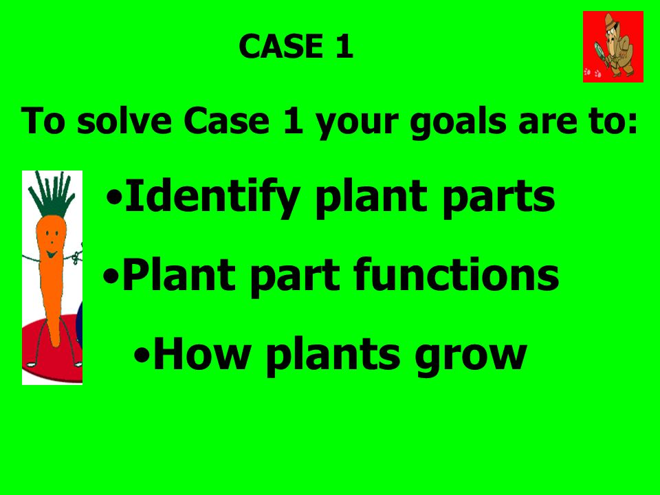 CASE 1 To solve Case 1 your goals are to: Identify plant parts Plant part functions How plants grow
