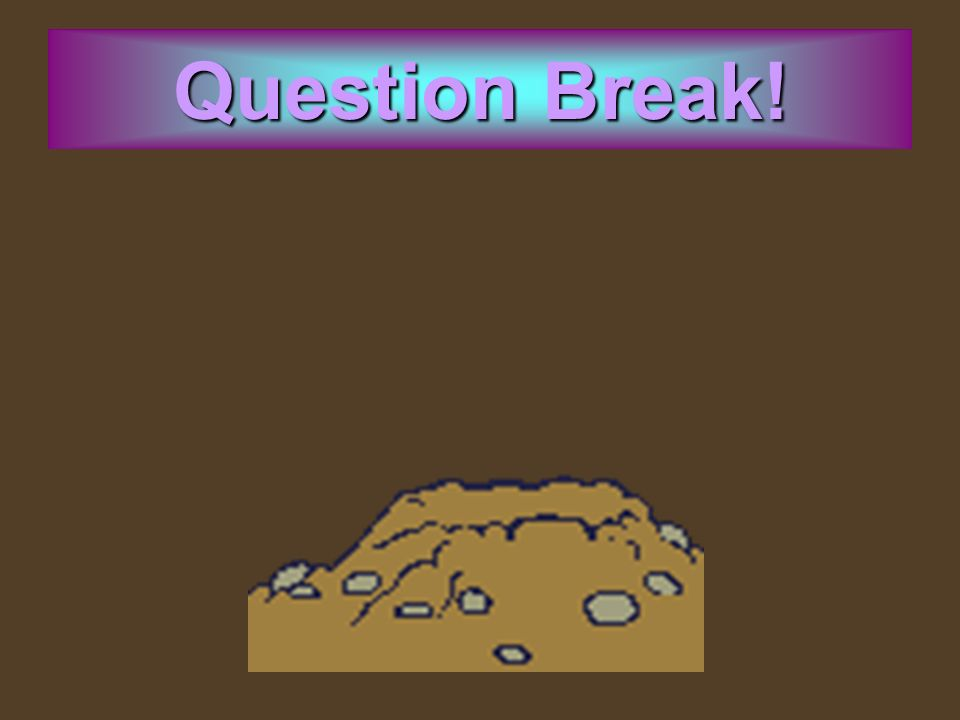 Question Break!