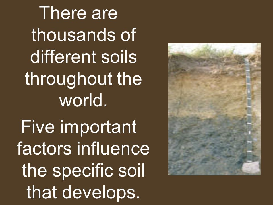 There are thousands of different soils throughout the world. Five important factors influence the specific soil that develops.