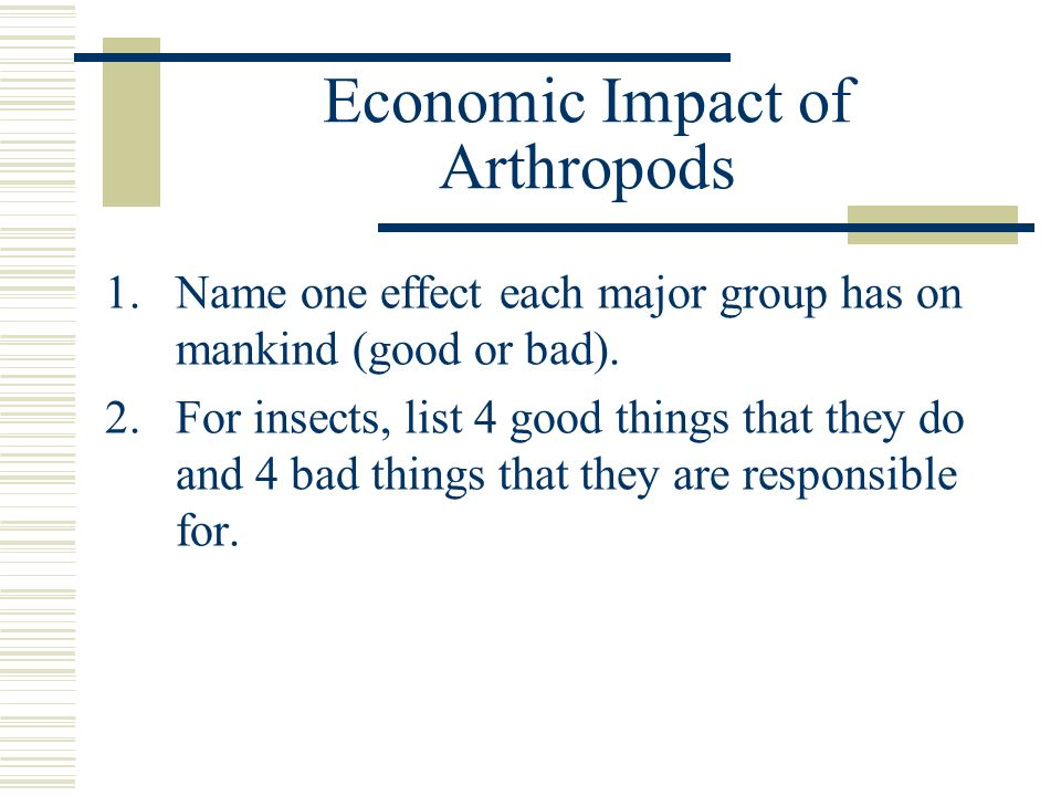 Economic Impact of Arthropods 1.Name one effect each major group has on mankind (good or bad). 2.For insects, list 4 good things that they do and 4 ba