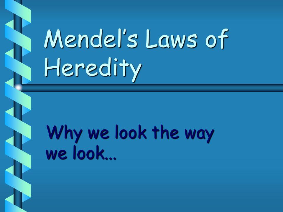 Mendels Laws of Heredity Why we look the way we look...