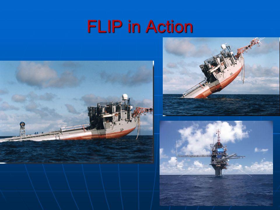 FLIP in Action