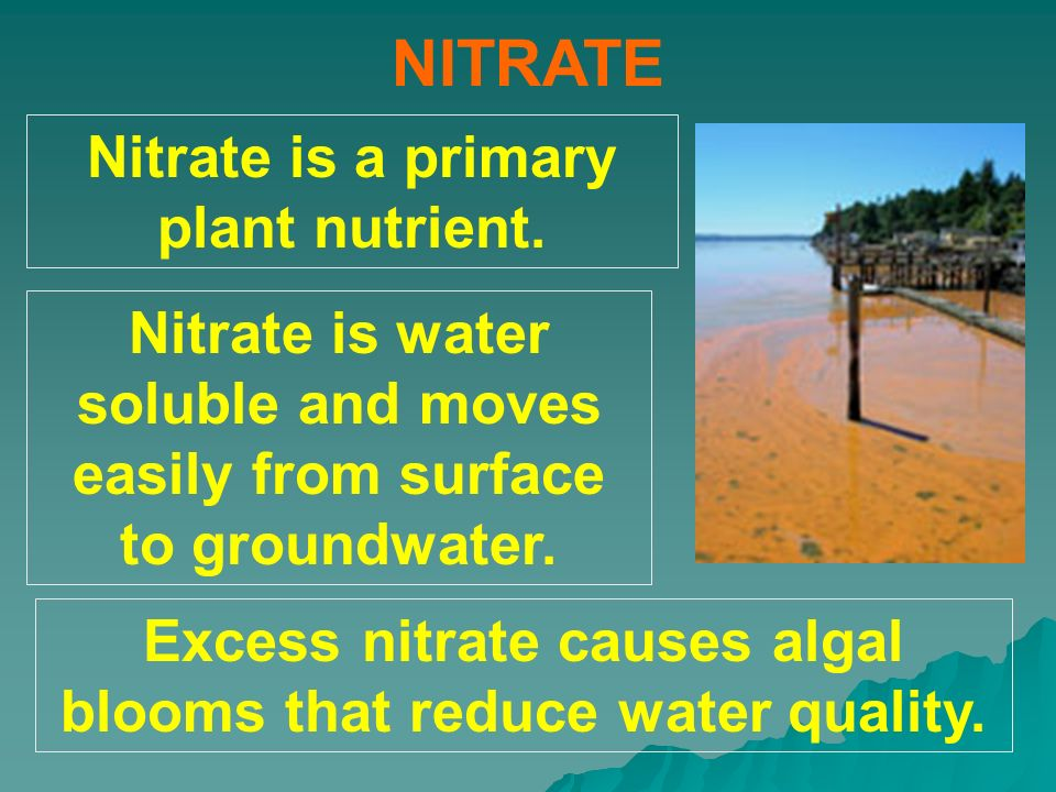 NITRATE Nitrate is a primary plant nutrient. Nitrate is water soluble and moves easily from surface to groundwater. Excess nitrate causes algal blooms