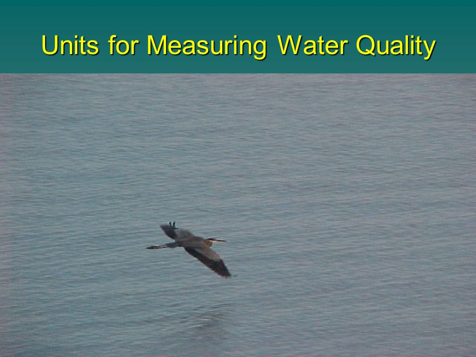Units for Measuring Water Quality