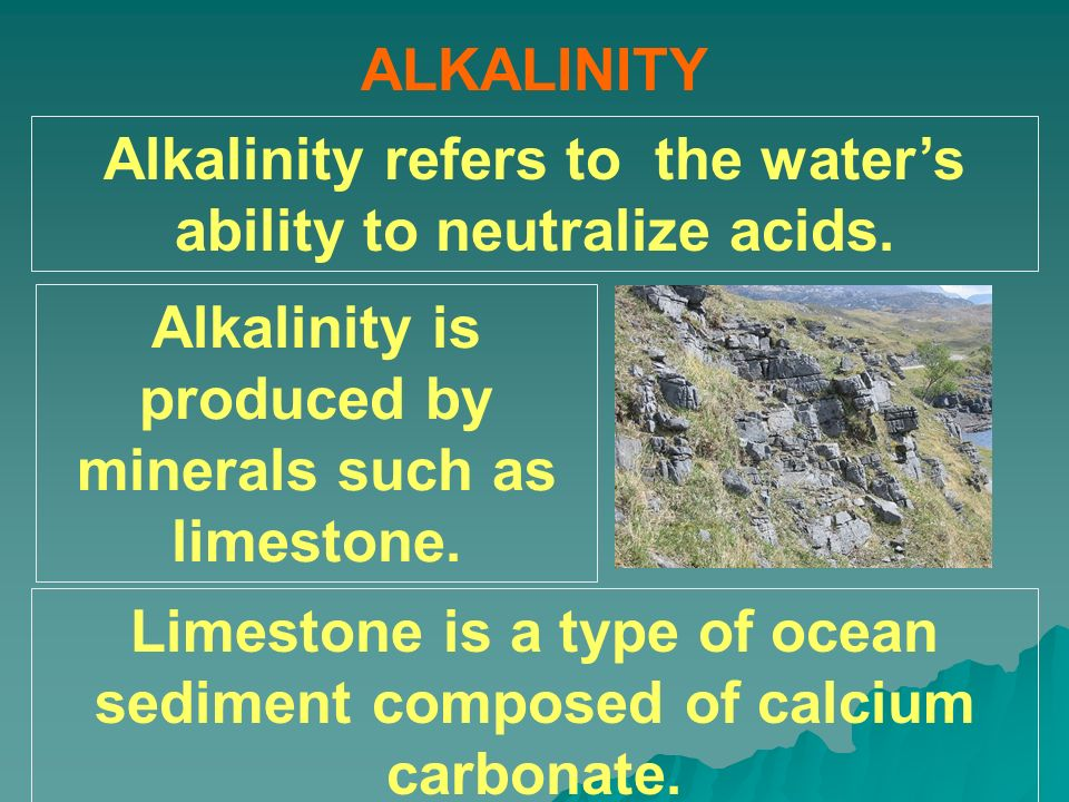 ALKALINITY Alkalinity refers to the waters ability to neutralize acids. Alkalinity is produced by minerals such as limestone. Limestone is a type of o