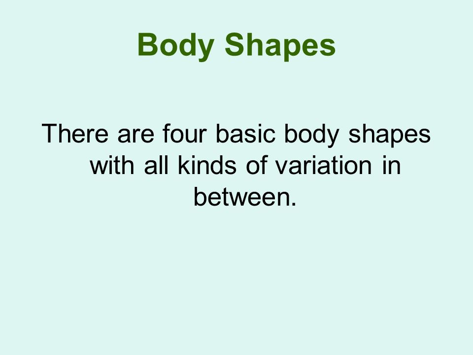 Body Shapes There are four basic body shapes with all kinds of variation in between.