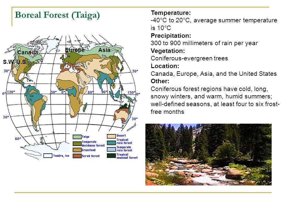 Temperature: -40°C to 20°C, average summer temperature is 10°C Precipitation: 300 to 900 millimeters of rain per year Vegetation: Coniferous-evergreen
