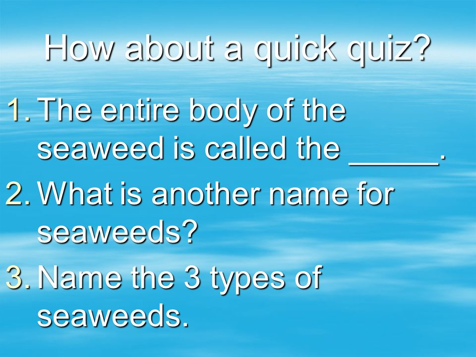 How about a quick quiz? 1.The entire body of the seaweed is called the _____. 2.What is another name for seaweeds? 3.Name the 3 types of seaweeds.
