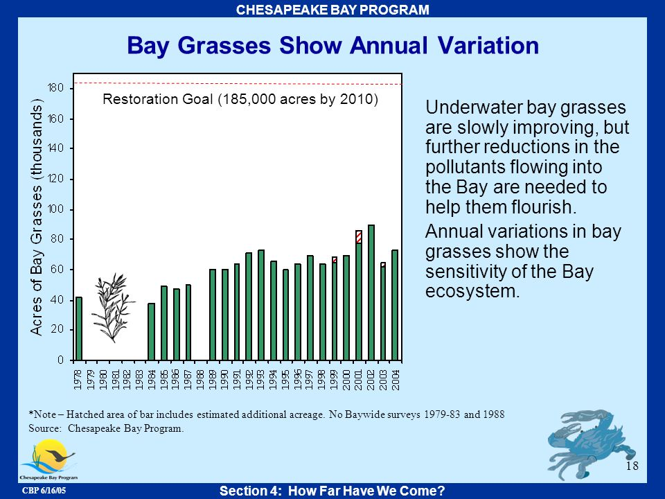 CBP 6/16/05 CHESAPEAKE BAY PROGRAM 18 Bay Grasses Show Annual Variation Underwater bay grasses are slowly improving, but further reductions in the pol
