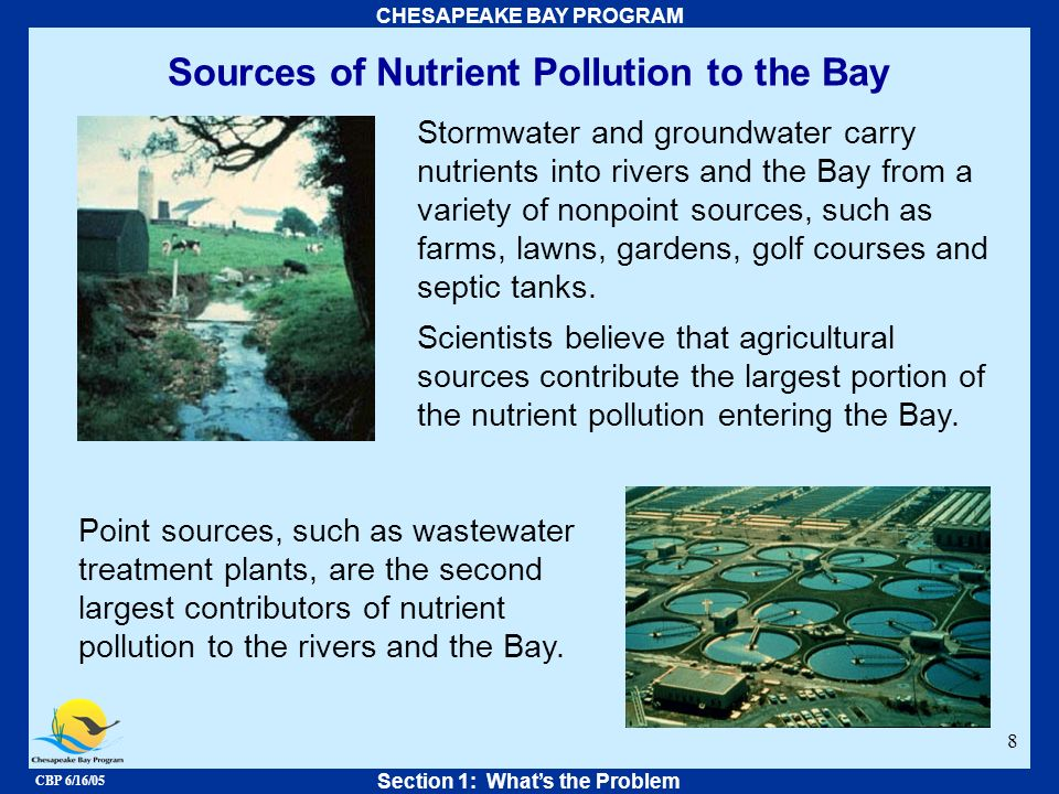 CBP 6/16/05 CHESAPEAKE BAY PROGRAM 8 Sources of Nutrient Pollution to the Bay Stormwater and groundwater carry nutrients into rivers and the Bay from