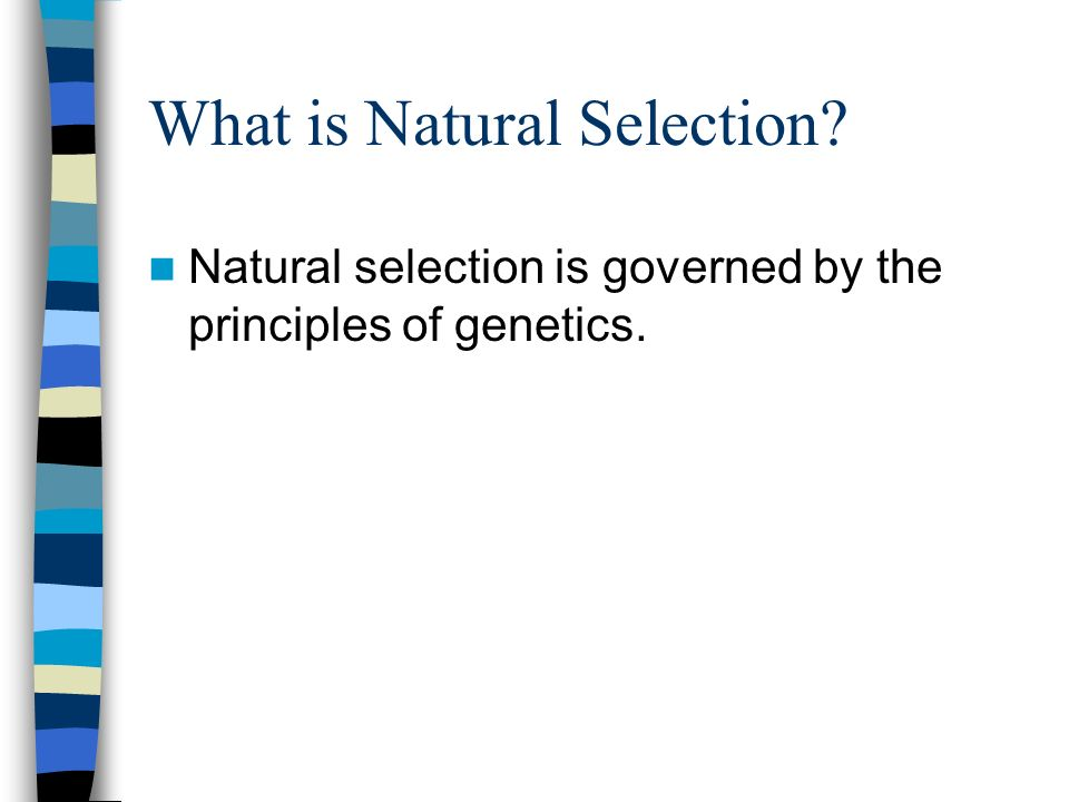 What is Natural Selection? Natural selection is governed by the principles of genetics.