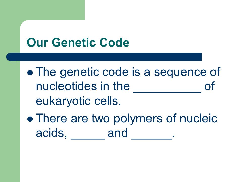 Our Genetic Code The genetic code is a sequence of nucleotides in the __________ of eukaryotic cells. There are two polymers of nucleic acids, _____ a