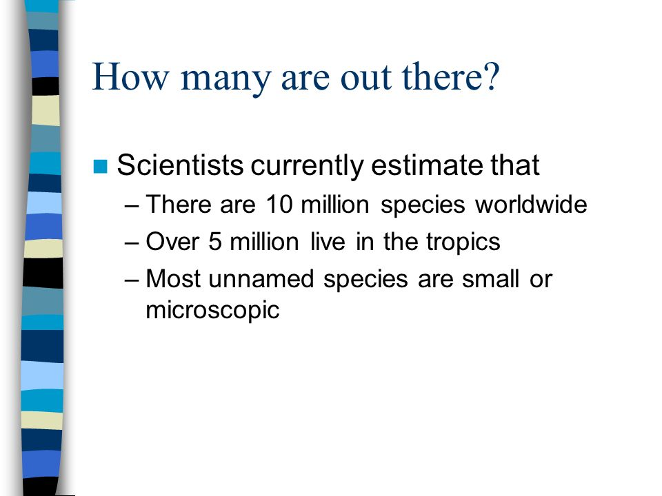 How many are out there? Scientists currently estimate that –There are 10 million species worldwide –Over 5 million live in the tropics –Most unnamed s