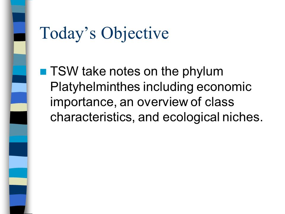 Todays Objective TSW take notes on the phylum Platyhelminthes including economic importance, an overview of class characteristics, and ecological nich