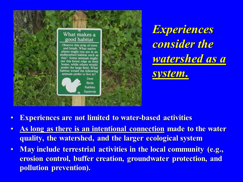 Experiences consider the watershed as a system.