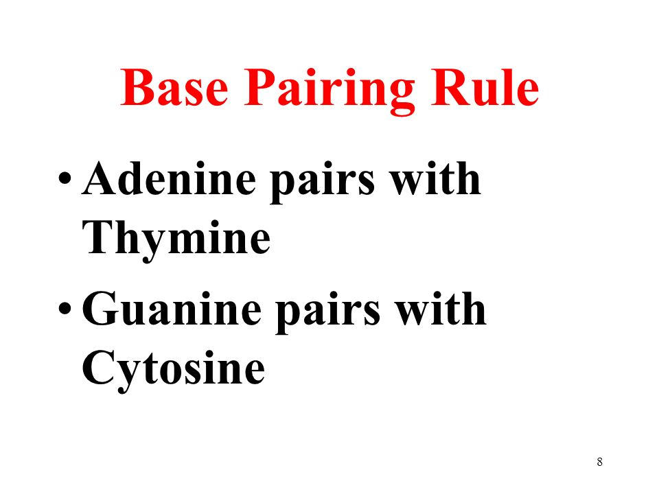 8 Base Pairing Rule Adenine pairs with Thymine Guanine pairs with Cytosine