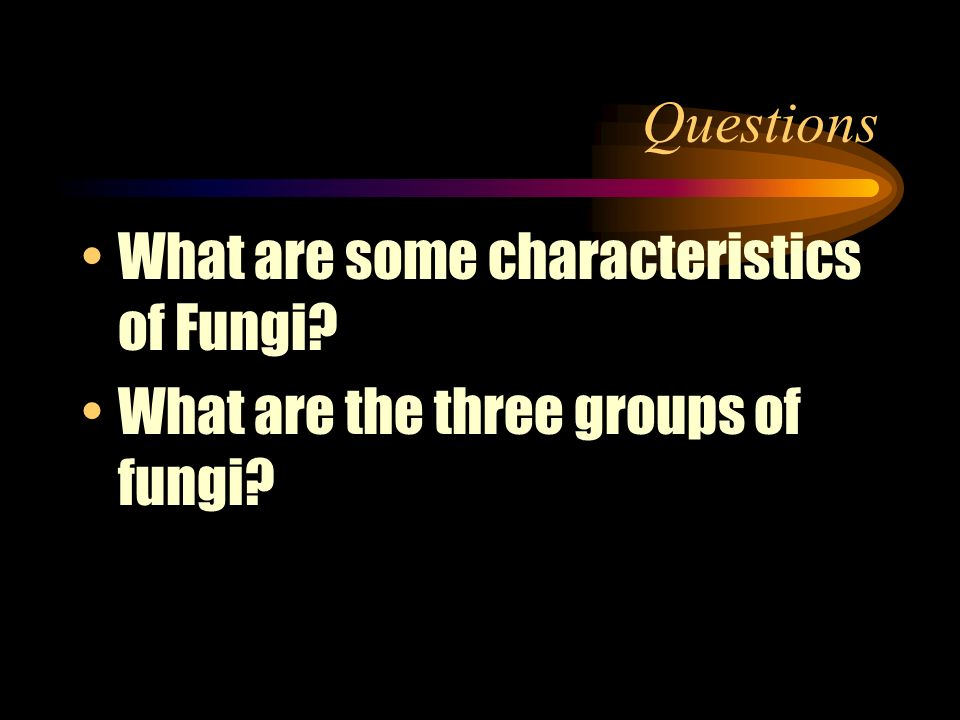 Kingdom Fungi Multicellular; complex cell walls, no chlorophyll Threadlike fungi (bread mold) club fungi (mushrooms) sac fungi (yeast and mildew)