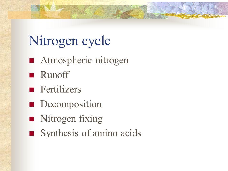 Nitrogen cycle Atmospheric nitrogen Runoff Fertilizers Decomposition Nitrogen fixing Synthesis of amino acids