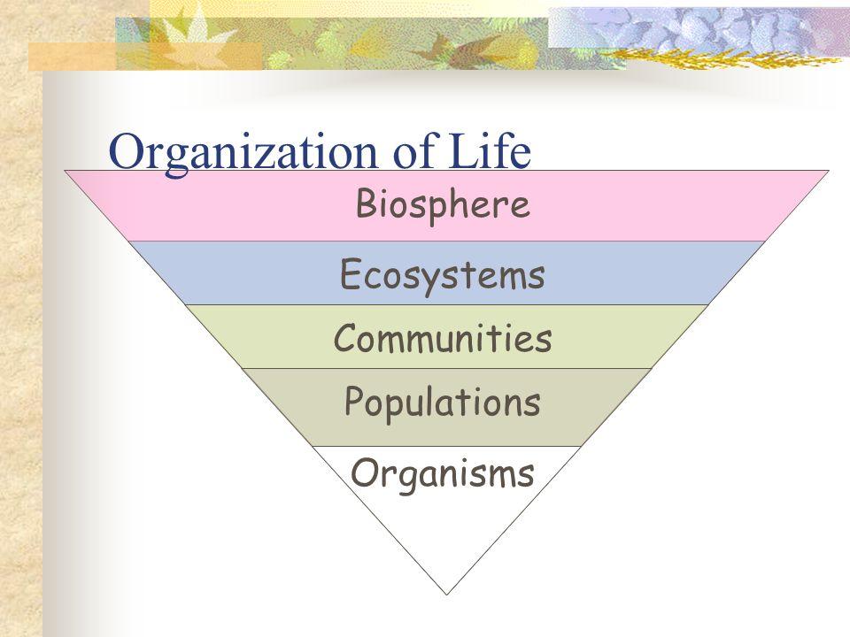Organization of Life Organisms Populations Communities Ecosystems Biosphere