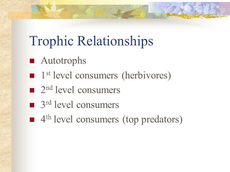 Trophic Relationships Autotrophs 1 st level consumers (herbivores) 2 nd level consumers 3 rd level consumers 4 th level consumers (top predators)